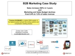 Marketing - Small Business B2B Case Study
